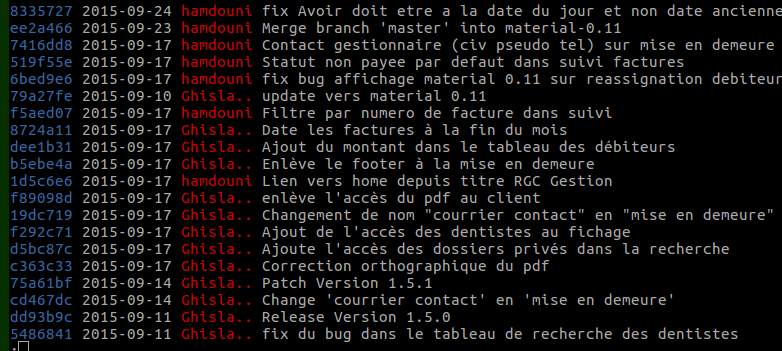 french git example